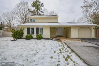 15238 Noblewood Lane, Bowie, MD 20716 (#PG9889236) :: Pearson Smith Realty