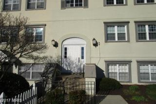 10400 46TH Avenue #3, Beltsville, MD 20705 (#PG9891479) :: Pearson Smith Realty