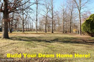 8709 Timothy Road, Brandywine, MD 20613 (#PG9895412) :: Pearson Smith Realty