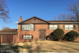 9610 Windermere Turn, Fort Washington, MD 20744 (#PG9895984) :: Pearson Smith Realty