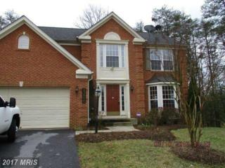 13115 Bay Hill Drive, Beltsville, MD 20705 (#PG9910992) :: Pearson Smith Realty