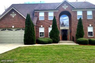 11814 Tregiovo Place, Fort Washington, MD 20744 (#PG9911806) :: Pearson Smith Realty