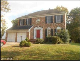 2112 Catherine Fran Drive, Accokeek, MD 20607 (#PG9915095) :: Pearson Smith Realty