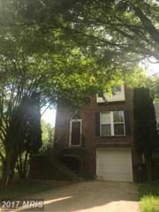 7101 Firebrush Court, Clinton, MD 20735 (#PG9918678) :: Pearson Smith Realty