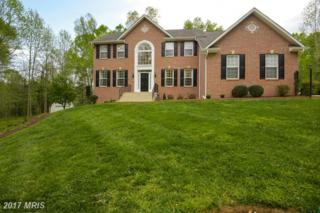 15713 Cheswicke Lane, Upper Marlboro, MD 20772 (#PG9922520) :: Pearson Smith Realty