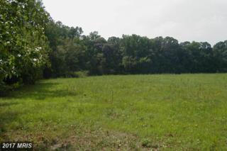 16900 Tanyard Road, Upper Marlboro, MD 20772 (#PG9924257) :: Pearson Smith Realty