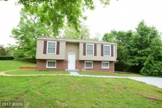 11000 Penny Avenue, Clinton, MD 20735 (#PG9931606) :: Pearson Smith Realty