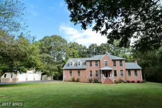 1801 Springvale Court, Accokeek, MD 20607 (#PG9935853) :: Pearson Smith Realty