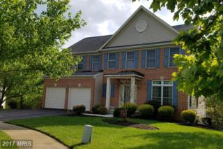 10001 Lawrence Pond Court, Laurel, MD 20708 (#PG9939192) :: Pearson Smith Realty