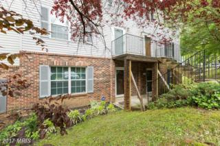 4631 Red Hawk Terrace, Bladensburg, MD 20710 (#PG9939610) :: Pearson Smith Realty