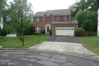 9720 Jewelwood Court, Clinton, MD 20735 (#PG9941048) :: Pearson Smith Realty