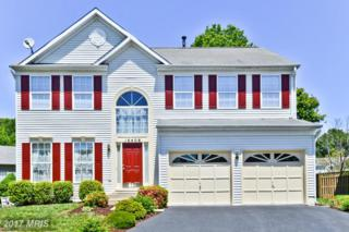 16408 Edgepark Court, Bowie, MD 20716 (#PG9941139) :: Pearson Smith Realty