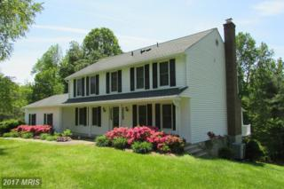 15203 Candy Hill Road, Upper Marlboro, MD 20772 (#PG9943073) :: Pearson Smith Realty