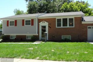 10217 Deakins Hall Drive, Adelphi, MD 20783 (#PG9949911) :: Pearson Smith Realty