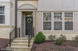 516 Overlook Park Drive #35, National Harbor, MD 20745 (#PG9950033) :: Pearson Smith Realty