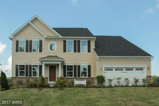 14224 Hidden Forest Drive, Accokeek, MD 20607 (#PG9952979) :: Pearson Smith Realty