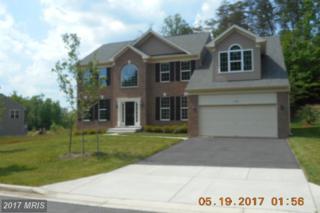 13906 Carlene Drive, Upper Marlboro, MD 20772 (#PG9953097) :: Pearson Smith Realty