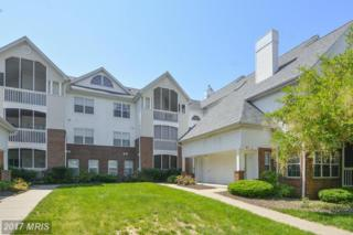 6612 Lake Park Drive 3D, Greenbelt, MD 20770 (#PG9953430) :: Pearson Smith Realty