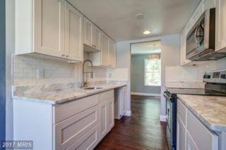 6912 Scotch Drive, Laurel, MD 20707 (#PG9957979) :: Keller Williams Pat Hiban Real Estate Group