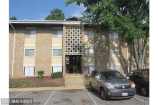 544 Wilson Bridge Drive 544 D-2, Oxon Hill, MD 20745 (#PG9958641) :: Pearson Smith Realty