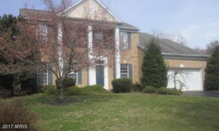 14508 Dolbrook Lane, Bowie, MD 20721 (#PG9959891) :: Pearson Smith Realty