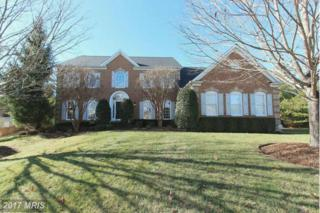 14517 Akker Court, Gainesville, VA 20155 (#PW9835304) :: Pearson Smith Realty