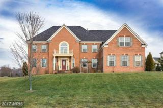 4604 Starting Post Court, Gainesville, VA 20155 (#PW9836907) :: Pearson Smith Realty