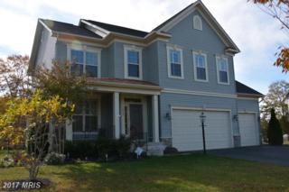 6889 Noyes Avenue, Haymarket, VA 20169 (#PW9838053) :: LoCoMusings