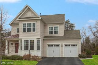 13028 Brierly Forest Court, Manassas, VA 20112 (#PW9839223) :: Pearson Smith Realty