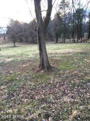 11704 Lucasville Road, Manassas, VA 20112 (#PW9839252) :: Pearson Smith Realty