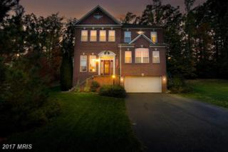 15408 Duckling Place, Woodbridge, VA 22191 (#PW9846884) :: Pearson Smith Realty