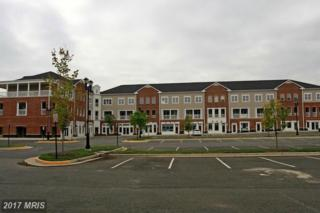 13895 Hedgewood Drive #333, Woodbridge, VA 22193 (#PW9850995) :: Pearson Smith Realty