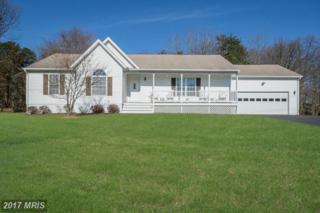 13809 Spriggs Road, Manassas, VA 20112 (#PW9853107) :: Pearson Smith Realty