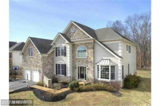 5278 Jacobs Creek Place, Haymarket, VA 20169 (#PW9857061) :: Pearson Smith Realty