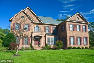 5550 Acerville Place, Haymarket, VA 20169 (#PW9858384) :: Pearson Smith Realty