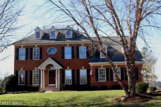 7802 Royal Sydney Drive, Gainesville, VA 20155 (#PW9860578) :: Pearson Smith Realty