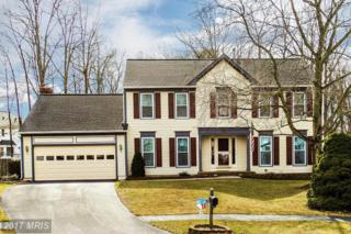 13945 Tall Timber Court, Gainesville, VA 20155 (#PW9862374) :: LoCoMusings