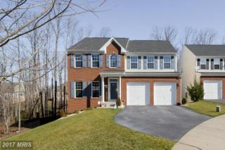 12701 Effie Rose Place, Woodbridge, VA 22192 (#PW9862987) :: Pearson Smith Realty