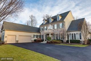 13206 Piedmont Vista Drive, Haymarket, VA 20169 (#PW9863673) :: Pearson Smith Realty