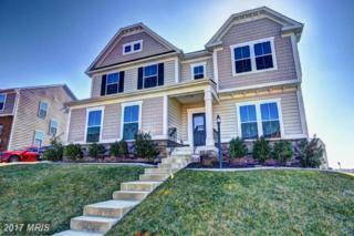 2173 Port Potomac Avenue, Woodbridge, VA 22191 (#PW9864077) :: Pearson Smith Realty