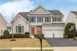 13623 Dodsworth Drive, Bristow, VA 20136 (#PW9864261) :: Pearson Smith Realty