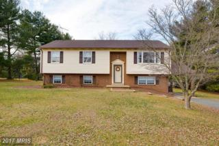 4104 Mount Atlas Lane, Haymarket, VA 20169 (#PW9864549) :: Pearson Smith Realty