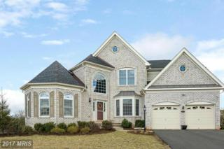 4652 Glass Mountain Way, Haymarket, VA 20169 (#PW9866460) :: Pearson Smith Realty