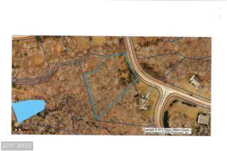 11314 Scott Peters Court, Manassas, VA 20112 (#PW9867476) :: Pearson Smith Realty