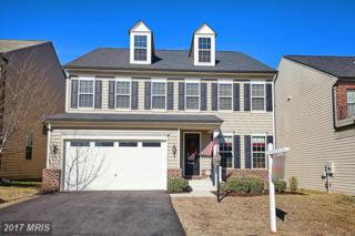 15908 Lee Carter Road, Gainesville, VA 20155 (#PW9868342) :: Pearson Smith Realty