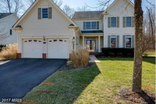 15703 Ryder Cup Drive, Haymarket, VA 20169 (#PW9869475) :: Pearson Smith Realty