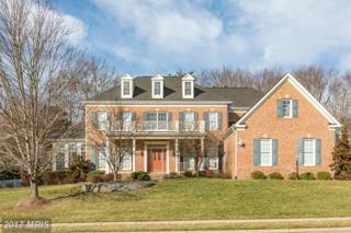 14516 Chamberry Circle, Haymarket, VA 20169 (#PW9871246) :: LoCoMusings