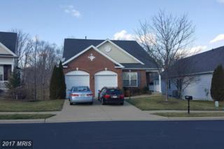 16873 Four Seasons Drive, Dumfries, VA 22025 (#PW9872828) :: Pearson Smith Realty