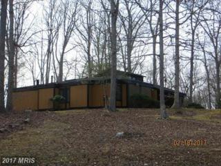 6221 Occoquan Forest Drive, Manassas, VA 20112 (#PW9875829) :: LoCoMusings