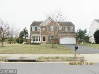 10548 Coral Berry Drive, Manassas, VA 20110 (#PW9878223) :: Pearson Smith Realty